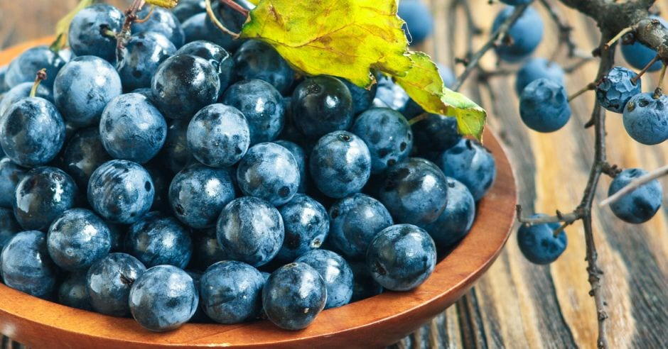Sloe-Gin-featured-image